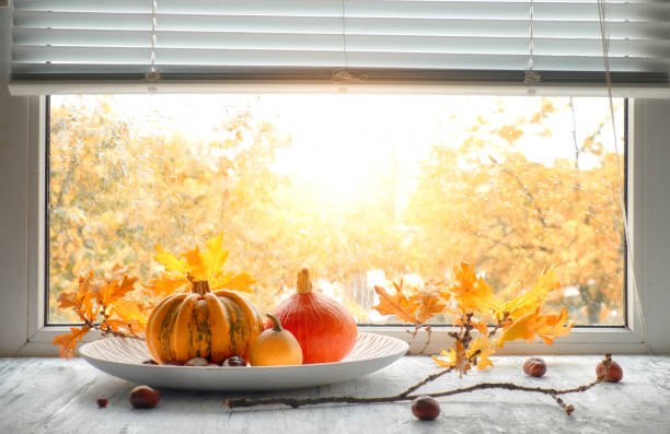 Pumpkins and yellow oak leaves by the window on a rainy day. Toned image, space for your text