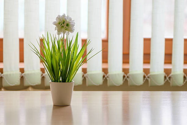 flower in a pot on the kitchen table